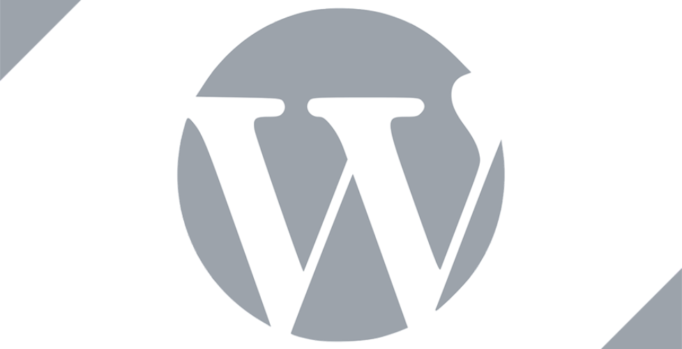 Important Things You Need to Do After Installing WordPress