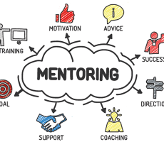 Entrepreneurship mentors in e-commerce